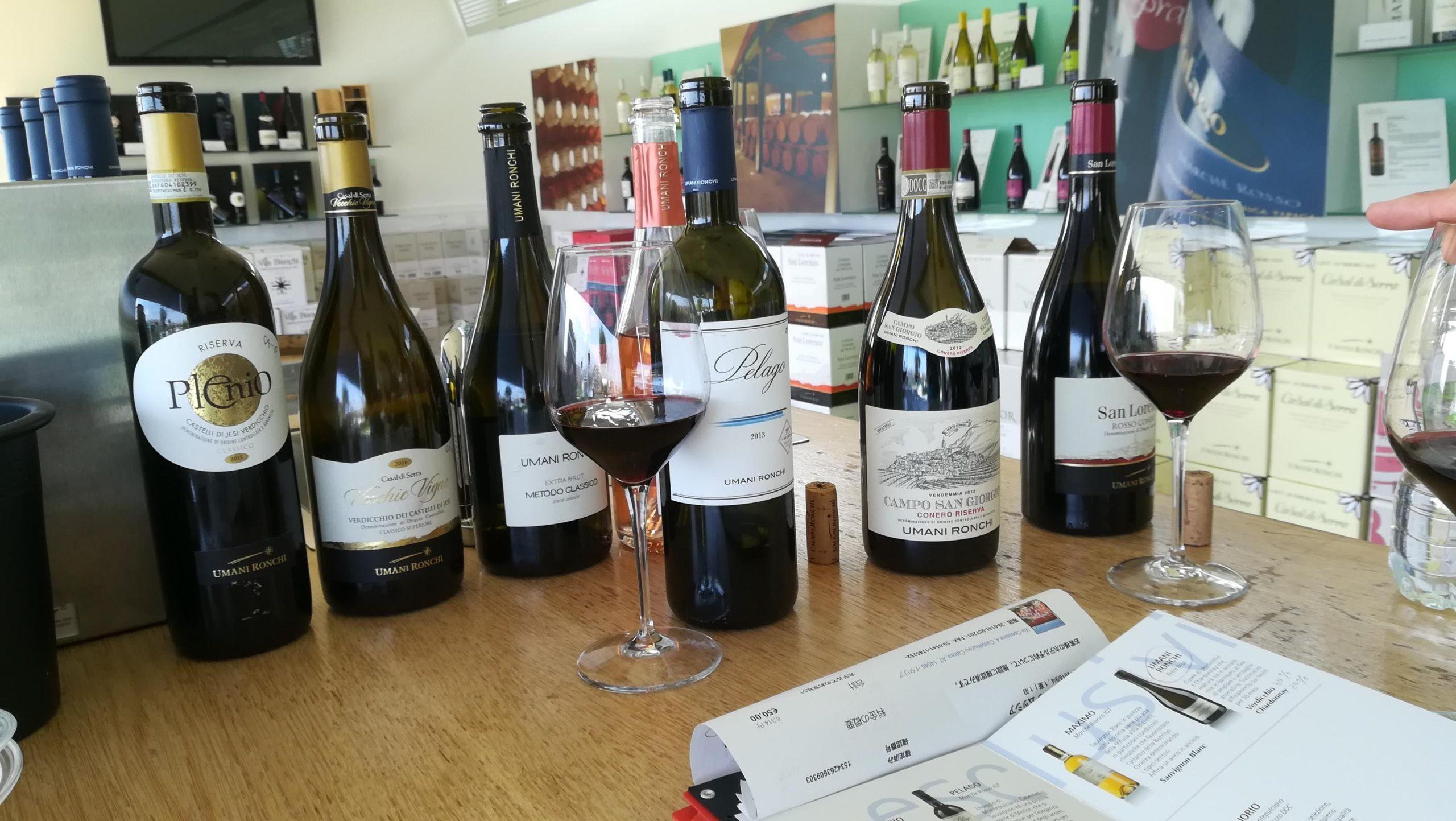 Sorseggiare vino è un toccasana per allenare il cervello  ワイン一口は脳運動の特効薬